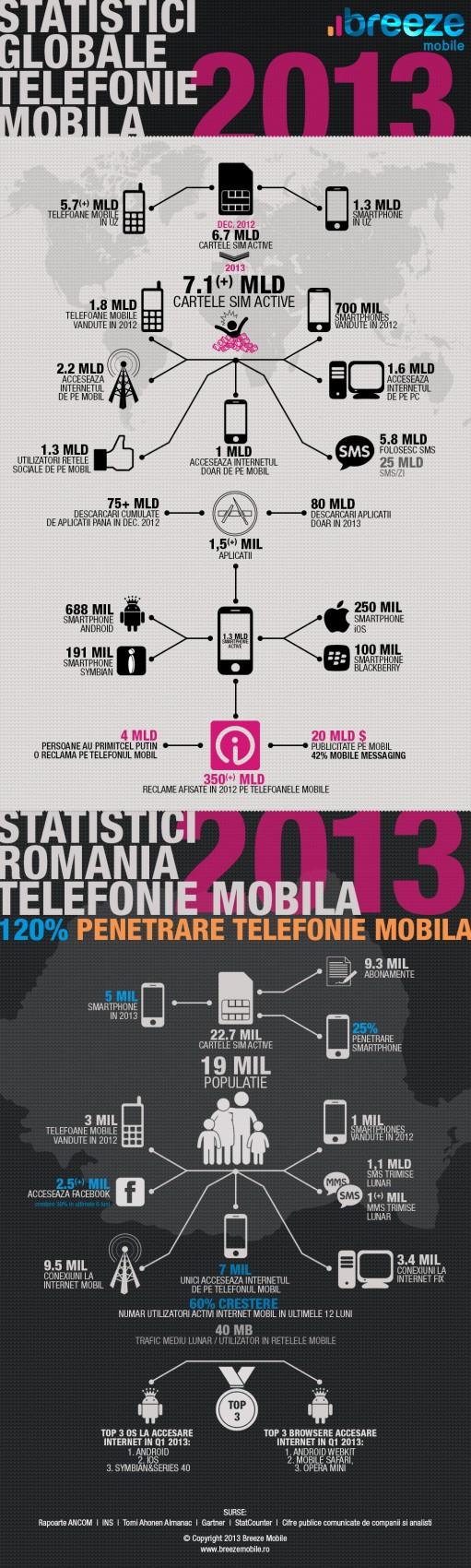 infografic-world-2013